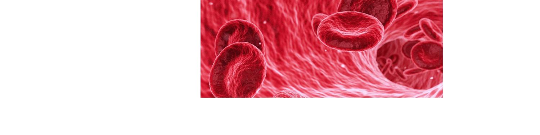 Blutspenden Nürnberg
